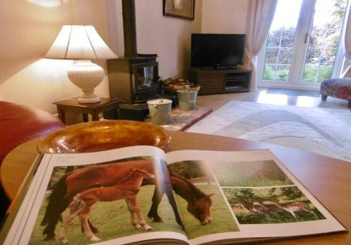 Holiday Homes New Forest pomy picture book Criddlestlye Cottage
