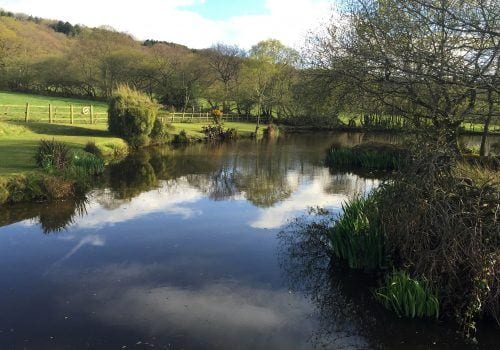 A quiet and peaveful down by the river at South Farm