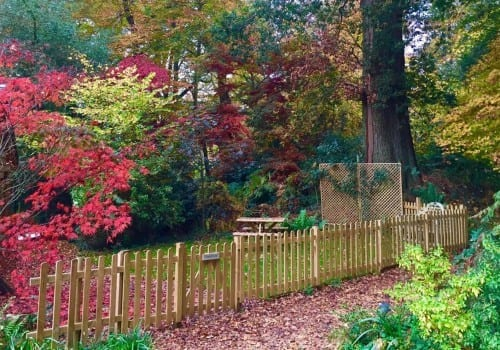 Stunning Autumnal colours surround the lodge