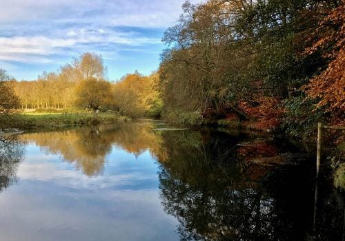 Hampshire Avon fishing available in self catering cottage