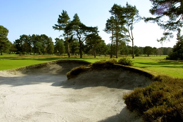 The stunning views surrounding Ferndown Golf Course