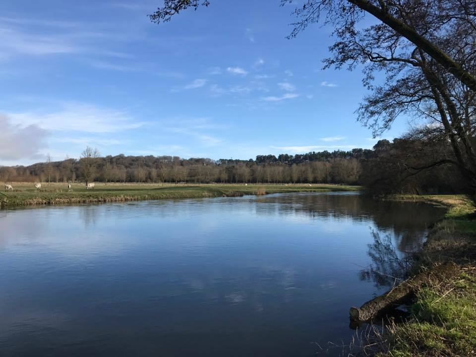 A stunning view across the Hampshire Avon River