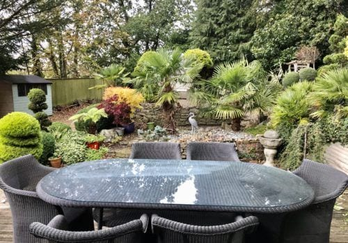 New Forest holiday let cottage garden