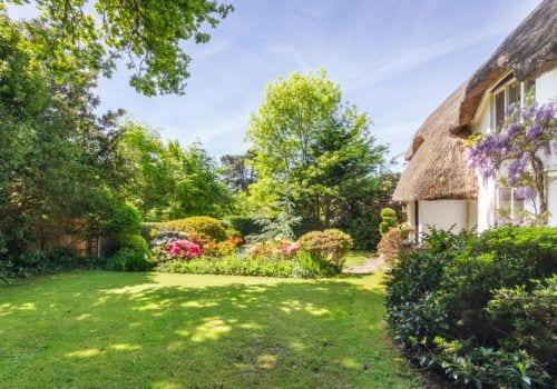 Forest Drove Cottage garden