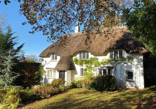 Forest Drove beautiful thatch cottage in the New Forest with leaded windows
