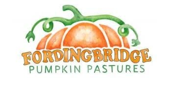 New Forest Film Night with Fordingbridge pumpkins