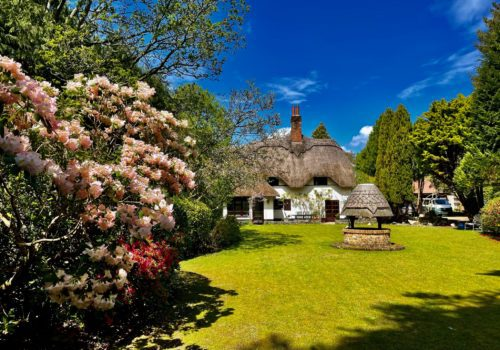 Beautiful Thatched Cottage in Dorset