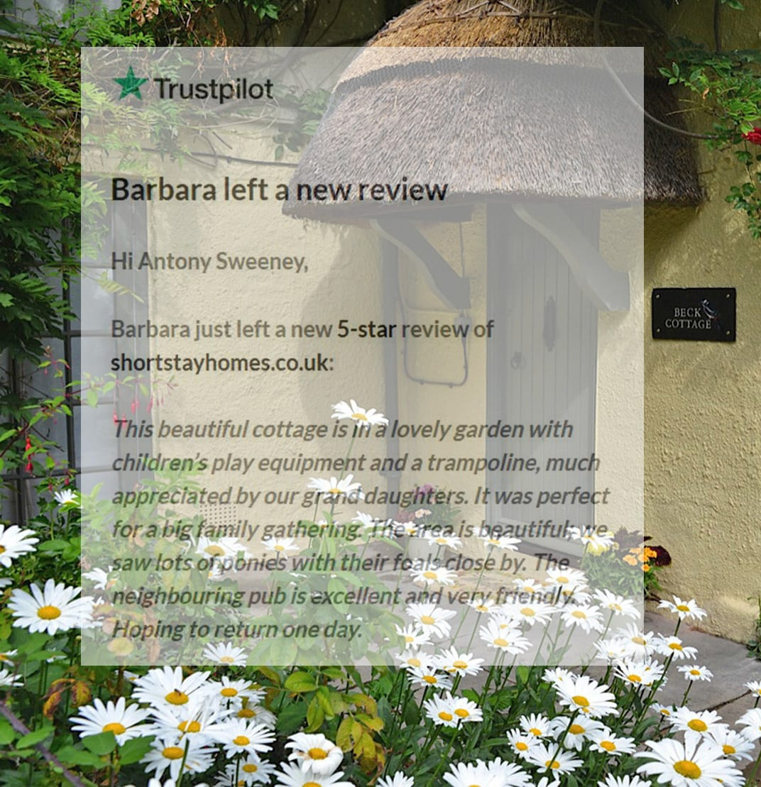 Beautiful New Forest self catering Thatched Cottage review
